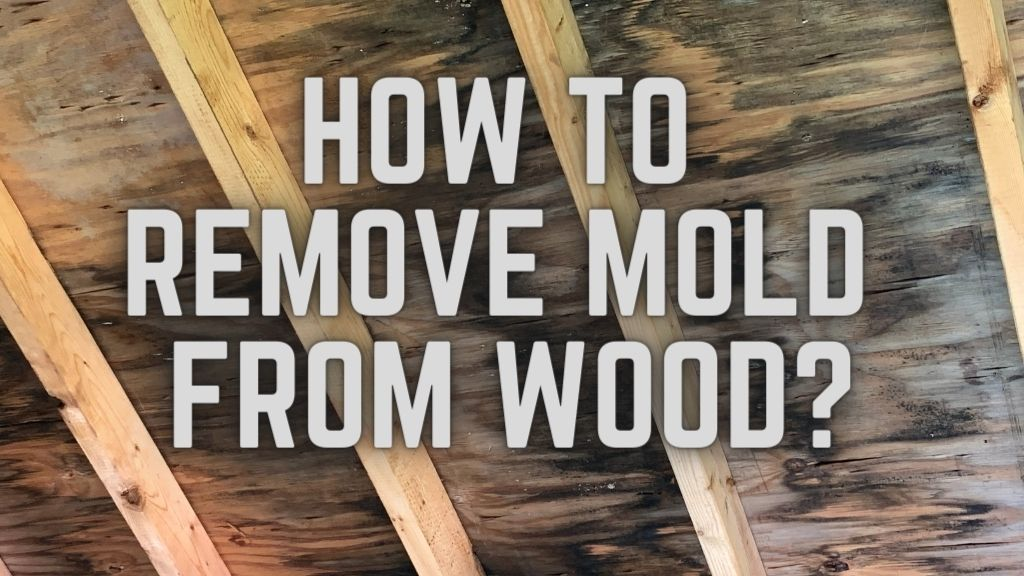 How To Remove Mold From Wood_